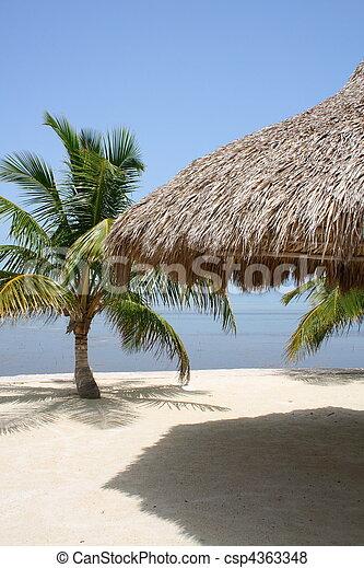 Hut und Ozean - csp4363348