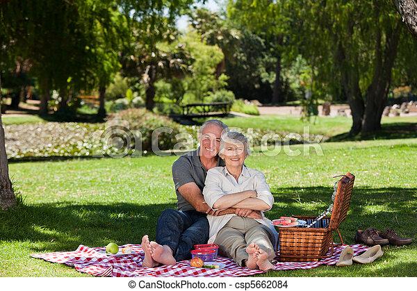 ha picknick, par, äldre, g - csp5662084