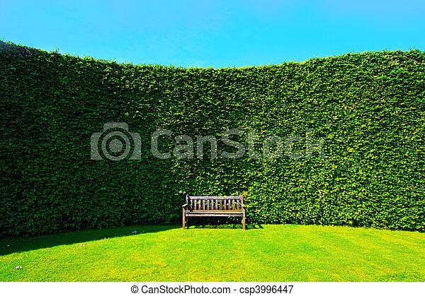 haies, banc jardin - csp3996447