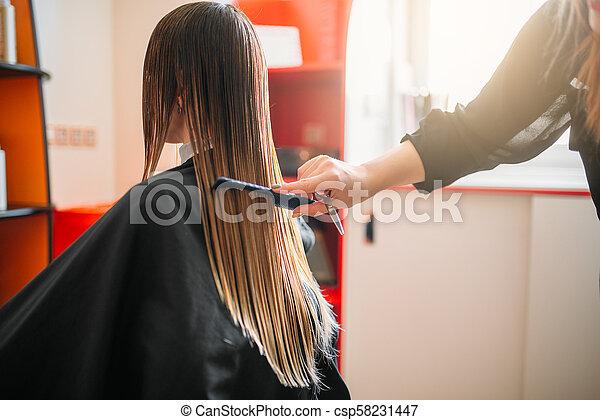 Hairdresser works with spray, female hairdressing - csp58231447