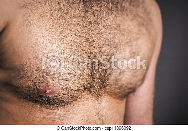 hairy chest - csp11396092