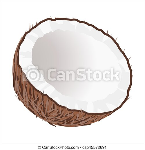Half of Coconut. Tropical Nut Isolated illustration - csp45572691