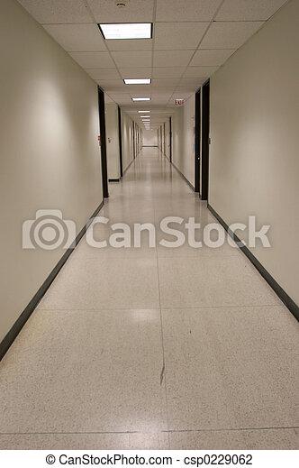 Hall - csp0229062