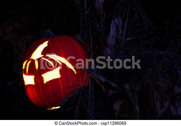 Halloween Jack-o-Lantern - csp11296069