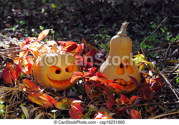 Halloween pumpkins in autumn leaves - csp16231660