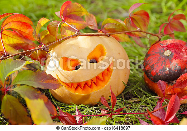 Halloween pumpkins in autumn leaves - csp16418697