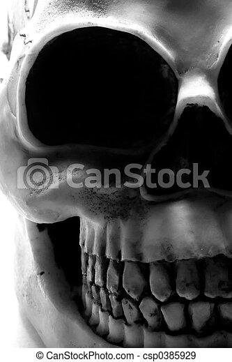 Halloween Skull - csp0385929