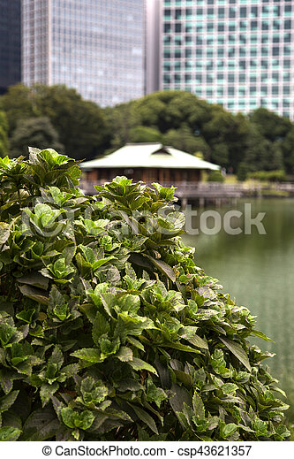 Detail of the hamarikyu gardens in tokyo, japan.