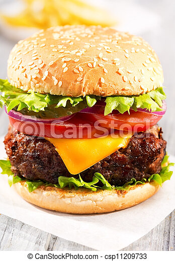 hamburger with fries - csp11209733