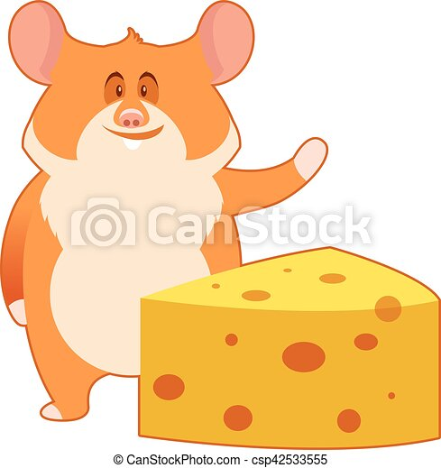 Hamster and a Piece of Cheese - csp42533555