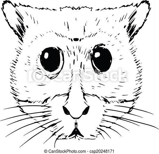 hamster - csp20248171