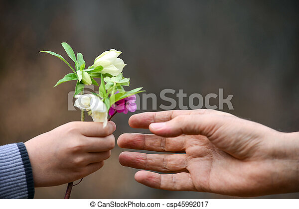 hand and flowers to gift, conceptual - csp45992017