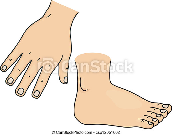 Illustration of hand and foot body parts.