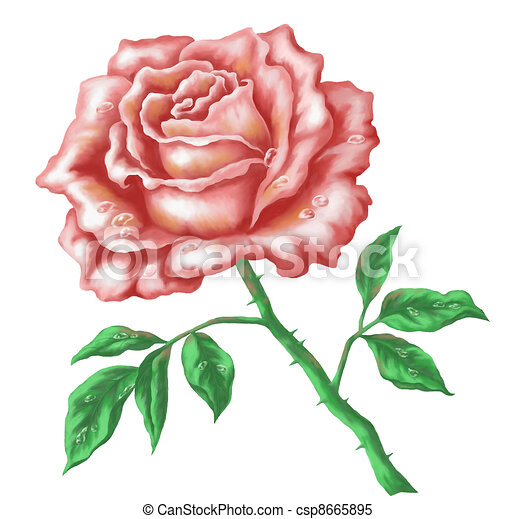 Dessin Rose Fleur Gite Pompadour Lubersac