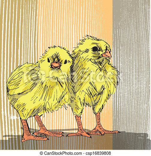 Hand draw sketch of Chicken - csp16839808
