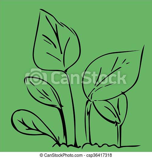 Hand drawing leaf - csp36417318
