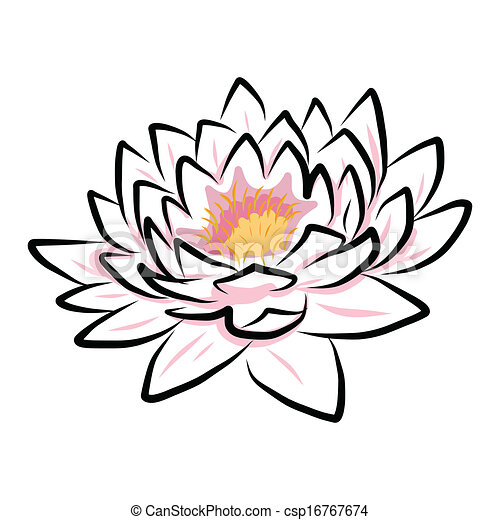 hand drawing water lily, lotus, flower - csp16767674