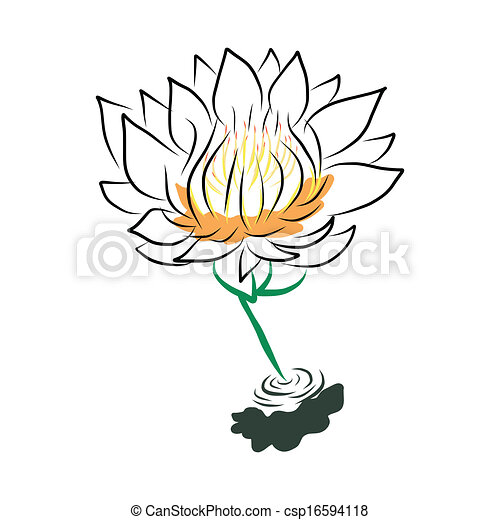 Hand drawing water lily lotus flower vector eps10 hand drawing water lily lotus flower csp16594118 mightylinksfo
