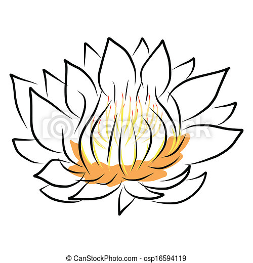 hand drawing water lily lotus flower vector eps10 rh canstockphoto com water lily pond clipart water lily clipart