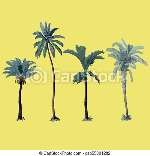 hand drawn botanical vector illustration with palm trees isolated