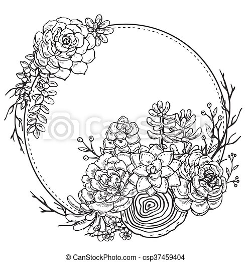 Hand drawn composition of succulent plants. Vector frame with hand ...