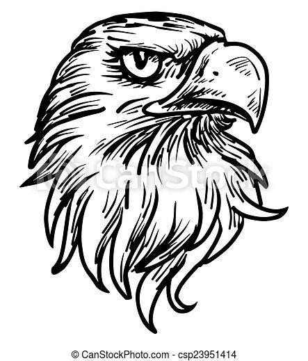 hand drawn eagle head - csp23951414