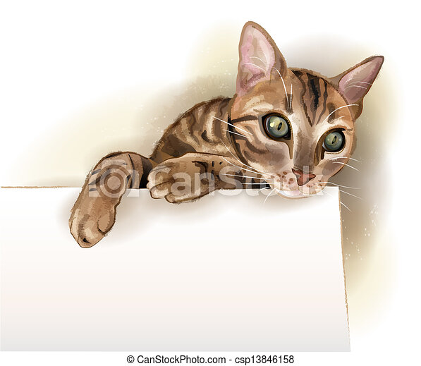 hand drawn illustration of  the cat with banner. Watercolor style. - csp13846158