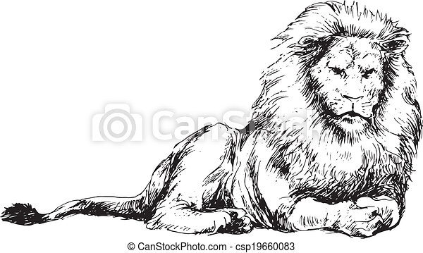Lion Outline Design Stock Photo Images 2 445 Lion Outline Design Royalty Free Pictures And Photos Available To Download From Thousands Of Stock Photographers Here presented 33+ lion outline drawing images for free to download, print or share. can stock photo