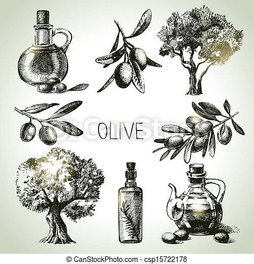 Hand drawn olive set - csp15722178