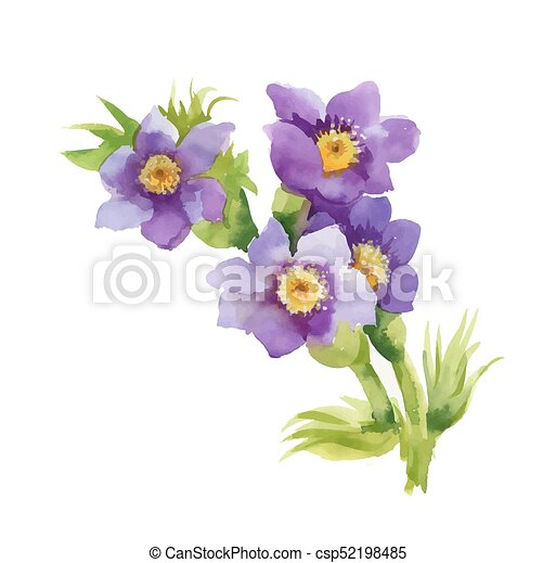 Hand drawn purple flowers isolated on white background mightylinksfo