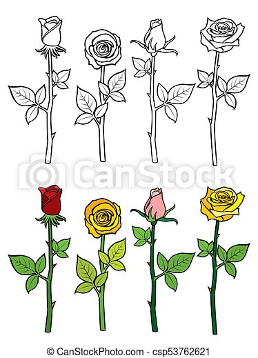 Hand Drawn Rose Coloring Page Colorful And Outline Roses Set