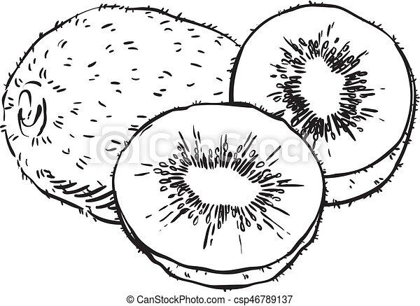 hand drawn sketch grapes illustration - csp46789137