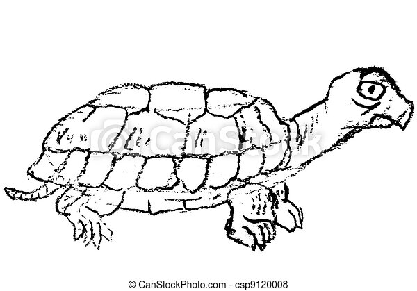 Hand Drawn Sketch Of Turtle