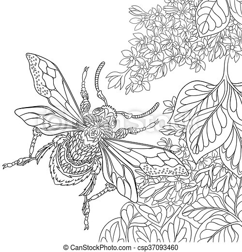 Hand drawn stylized beetle insect - csp37093460
