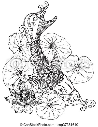 Hand Drawn Vector Illustration Of Koi Fish With Lotus Flower