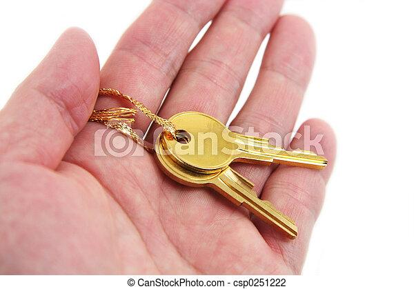 hand hold golden key - csp0251222
