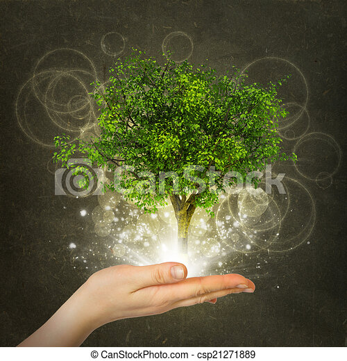Hand hold magical green tree and rays of light - csp21271889