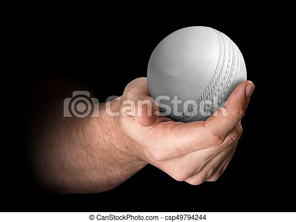 Hand Holding Cricket Ball - csp49794244