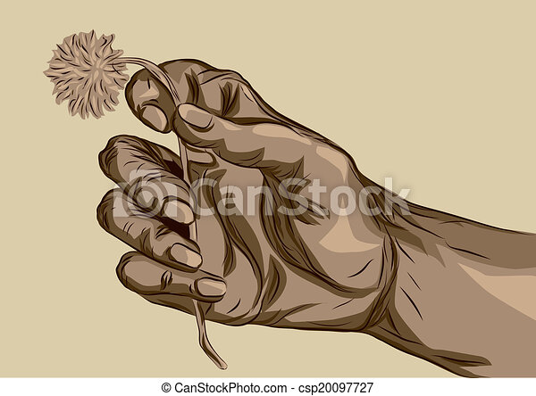 Line Drawing Holding Hands : Hand holding flower human with abstract vector