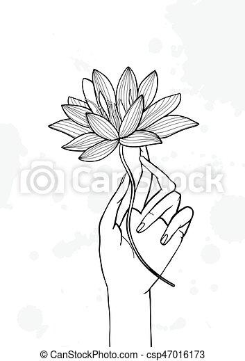 Hand Holding Lotus Flower Contour Hand Drawn Illustration Yoga