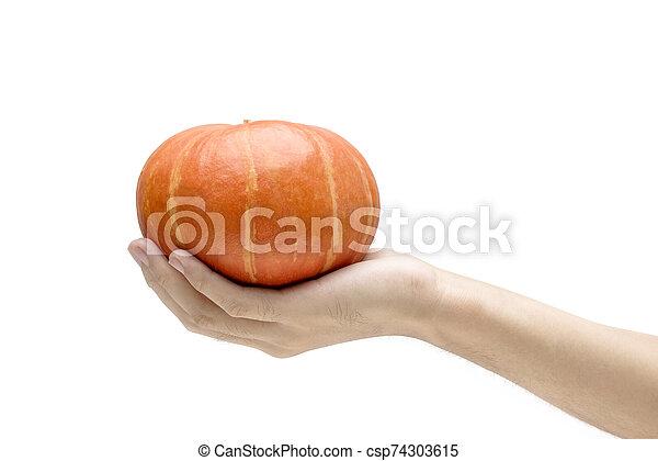 Hand holding pumpkin - csp74303615