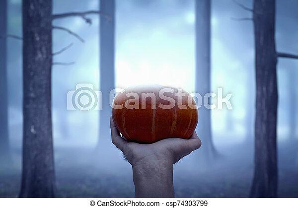 Hand holding pumpkin - csp74303799