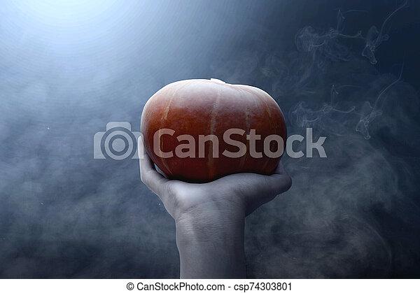 Hand holding pumpkin - csp74303801
