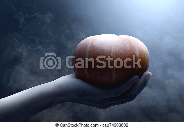 Hand holding pumpkin - csp74303802