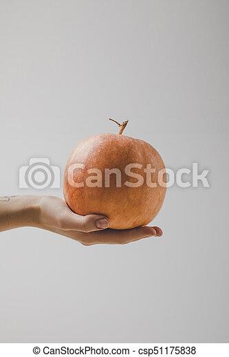hand holding pumpkin - csp51175838