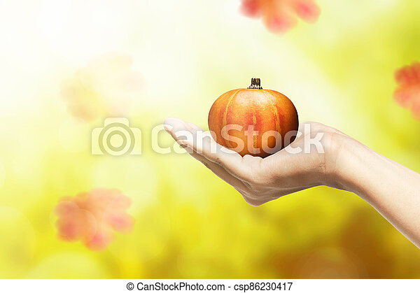 Hand holding pumpkin with autumn leaves - csp86230417