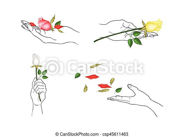 Hand Holding Rose Flowers With Green Leaves Hand Drawn Sketch Set