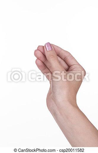 hand holding something - csp20011582