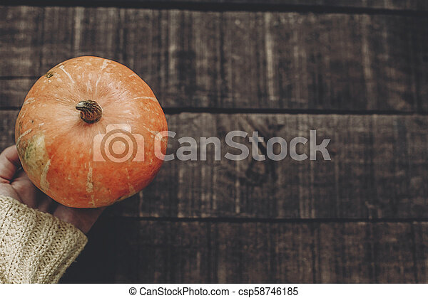 hand in sweater holding pumpkin on rustic wooden background, top view. space for text. cozy autumn mood. fall holiday. stylish image thanksgiving or halloween concept greeting card - csp58746185