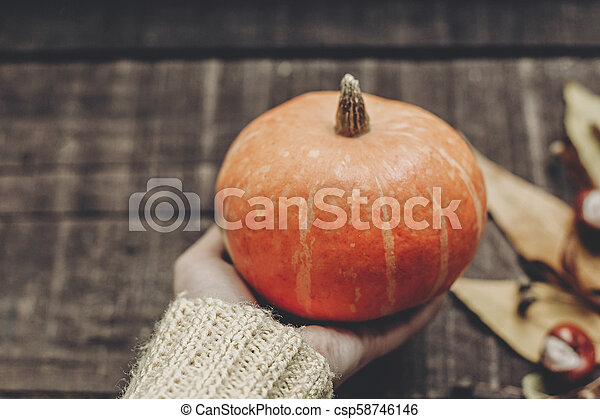 hand in sweater holding pumpkin with leaves and berries on rustic wooden background, top view. space for text. thanksgiving or halloween concept greeting card. cozy autumn mood - csp58746146